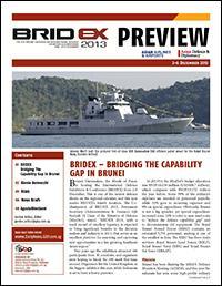 Defense & Security 2013